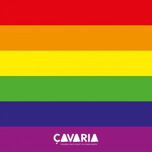 regenboogvlag_A4_cavaria